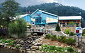 Ripley's Aquarium of the Smokies<