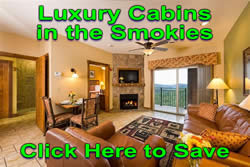 Luxury Cabins