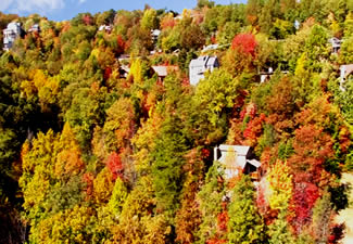 Vibrant Fall Colors in the Great Smoky Mountains